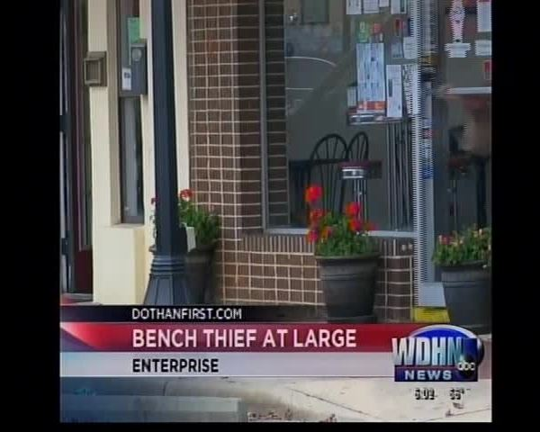 Enterprise bench bandit steals from Milky Moo-s- others_09828159