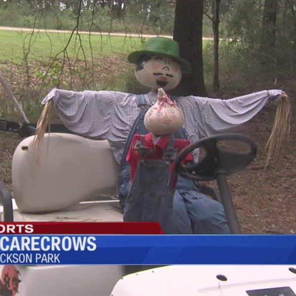 Opp Scarecrows