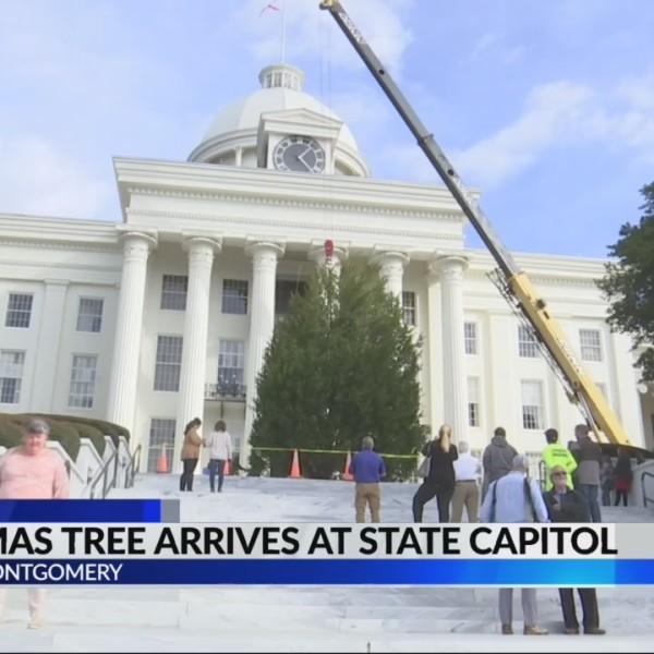 Christmas tree arrives at State Captiol