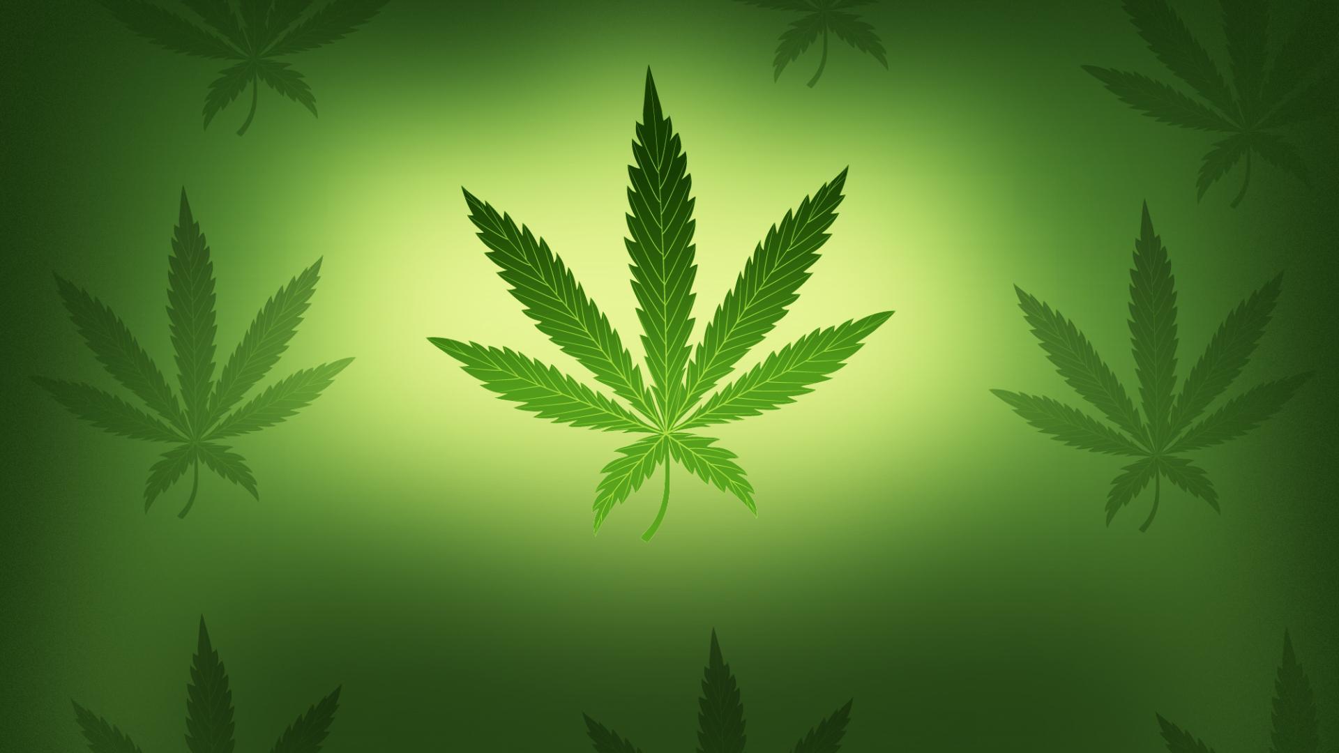 AP PHOTO _Marijuana_12050111686_1556118874029.jpg